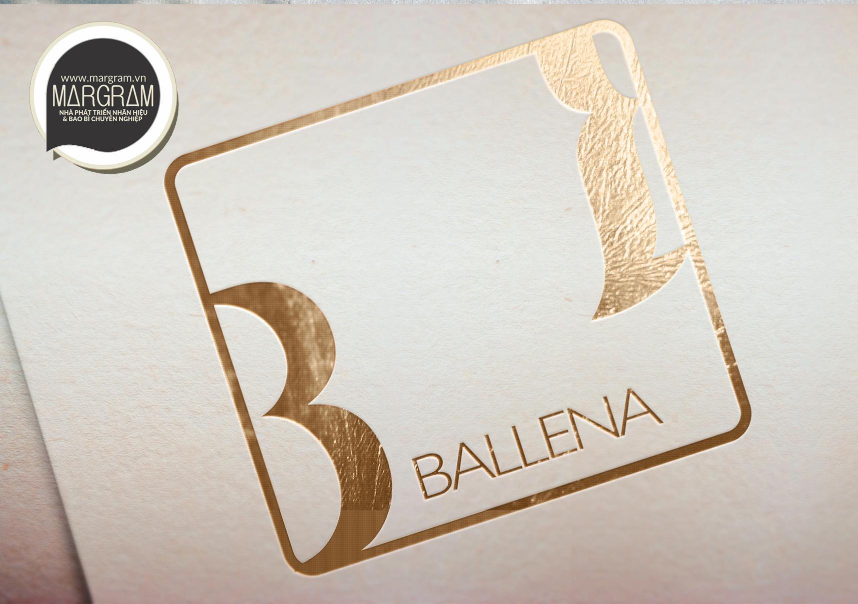 bo-nhan-dien-nhan-hieu-ballena-09