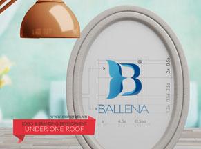Nhận diện nhãn hiệu BALLENA - Những chú cá voi xanh cho thị trường Bắc Âu