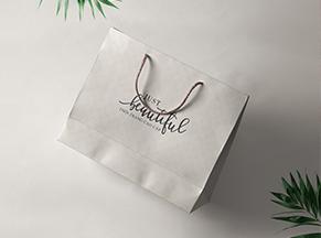 Túi giấy thời trang – MG 03