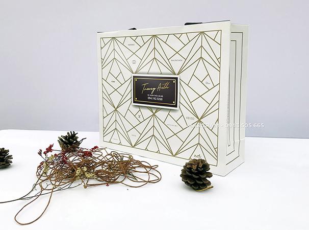 Túi giấy thời trang | MGT - 2622 - 225